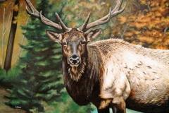 Titre: «Le roi de la forêt» Huile sur toile 24''x 36'' Vendue